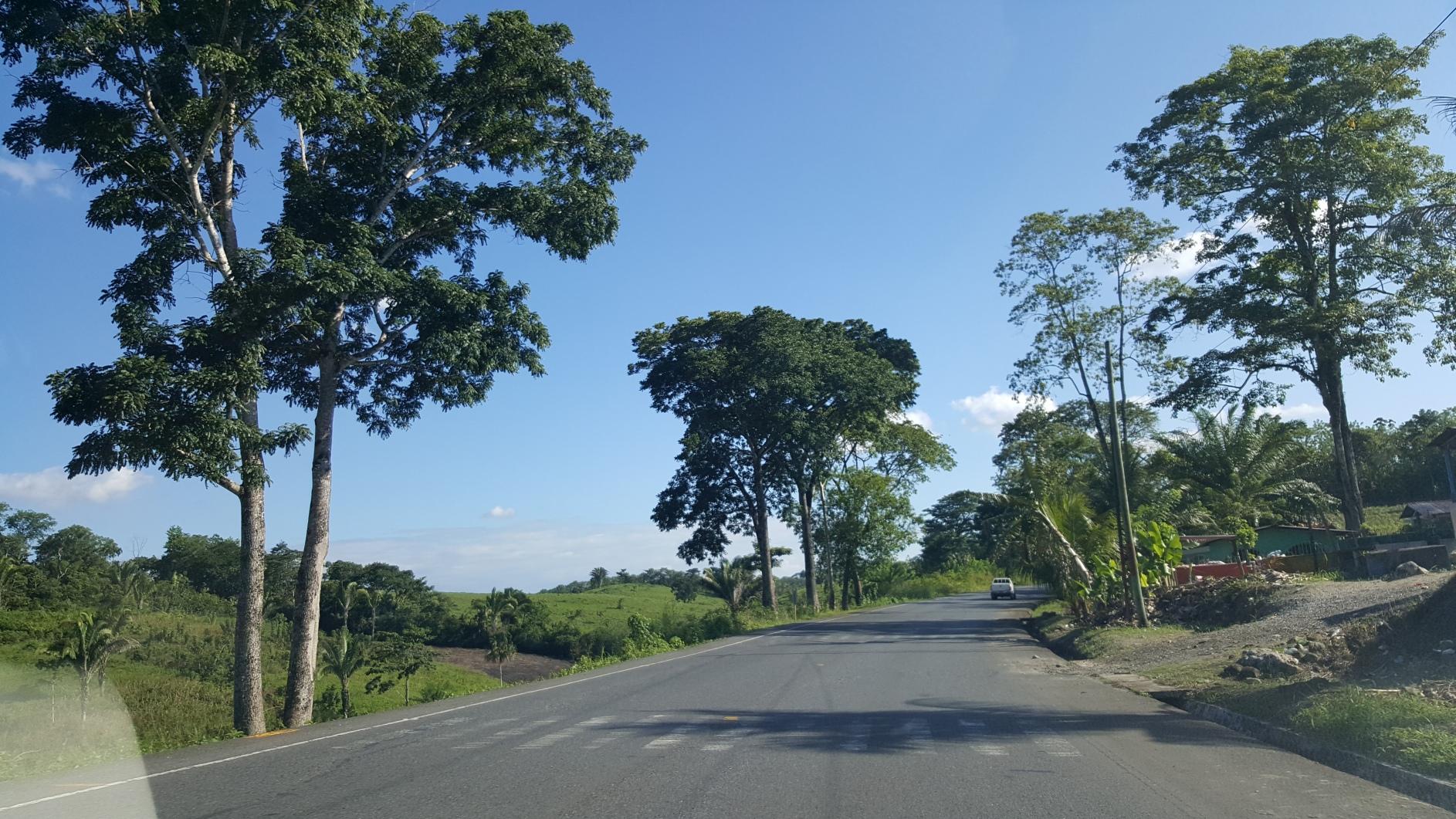 Gwatemala361