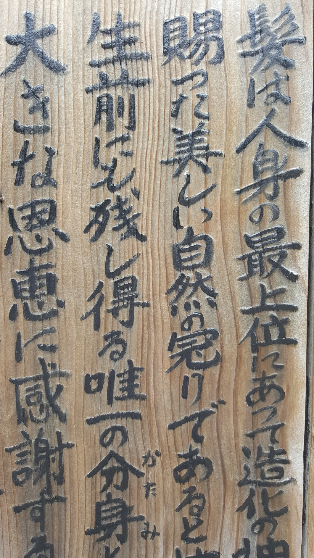 Japonia 09.06.2016 15aa