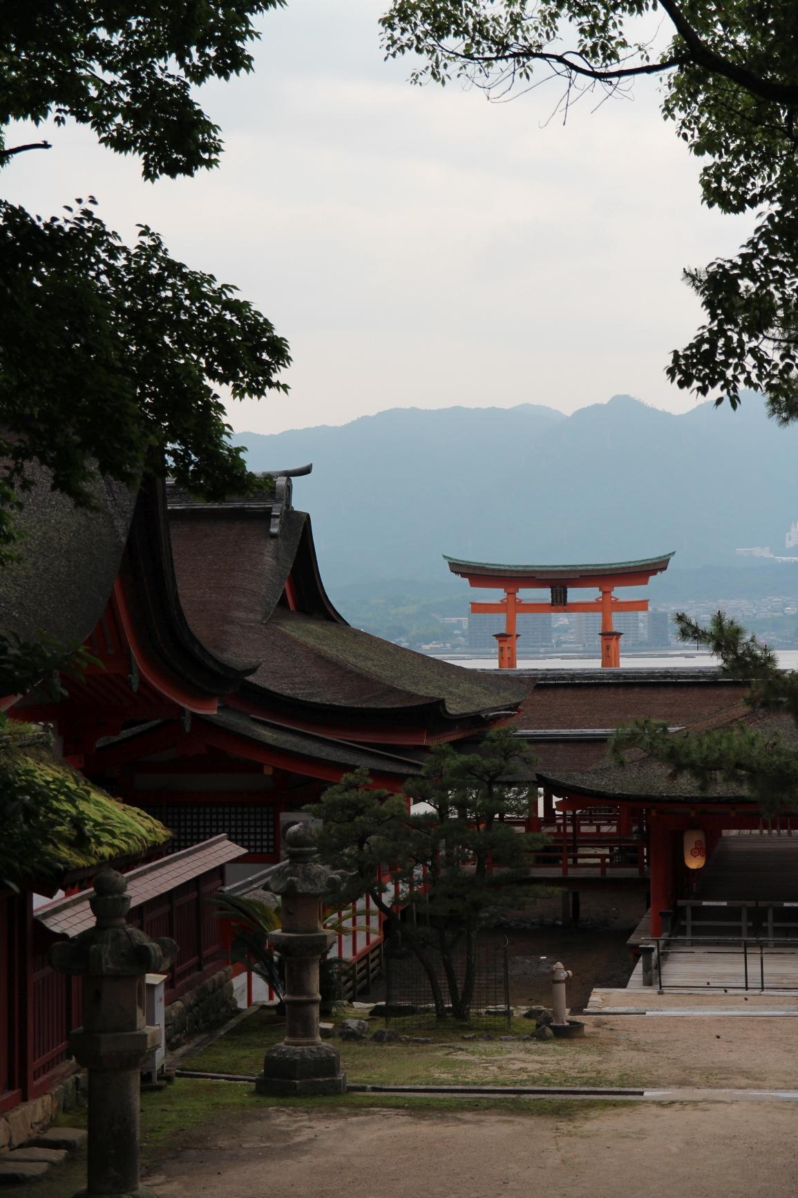 Japonia 11.06.2016 62