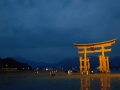 Japonia 11.06.2016 81