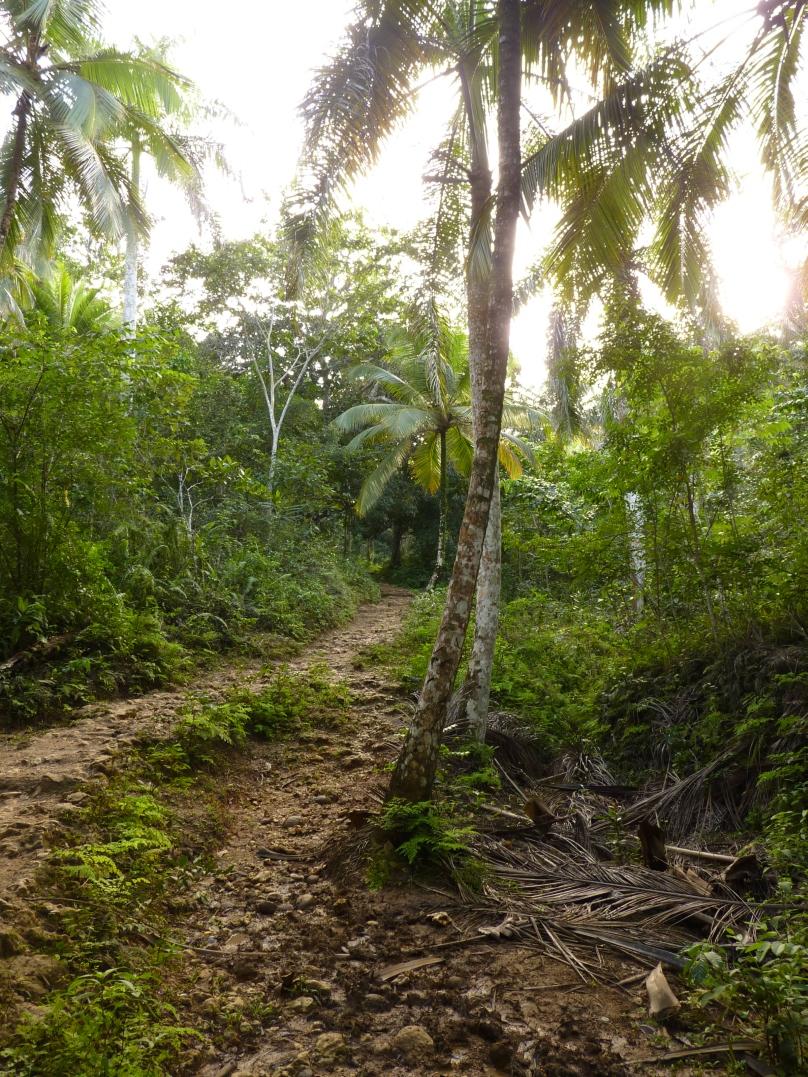 Dominikana010.JPG