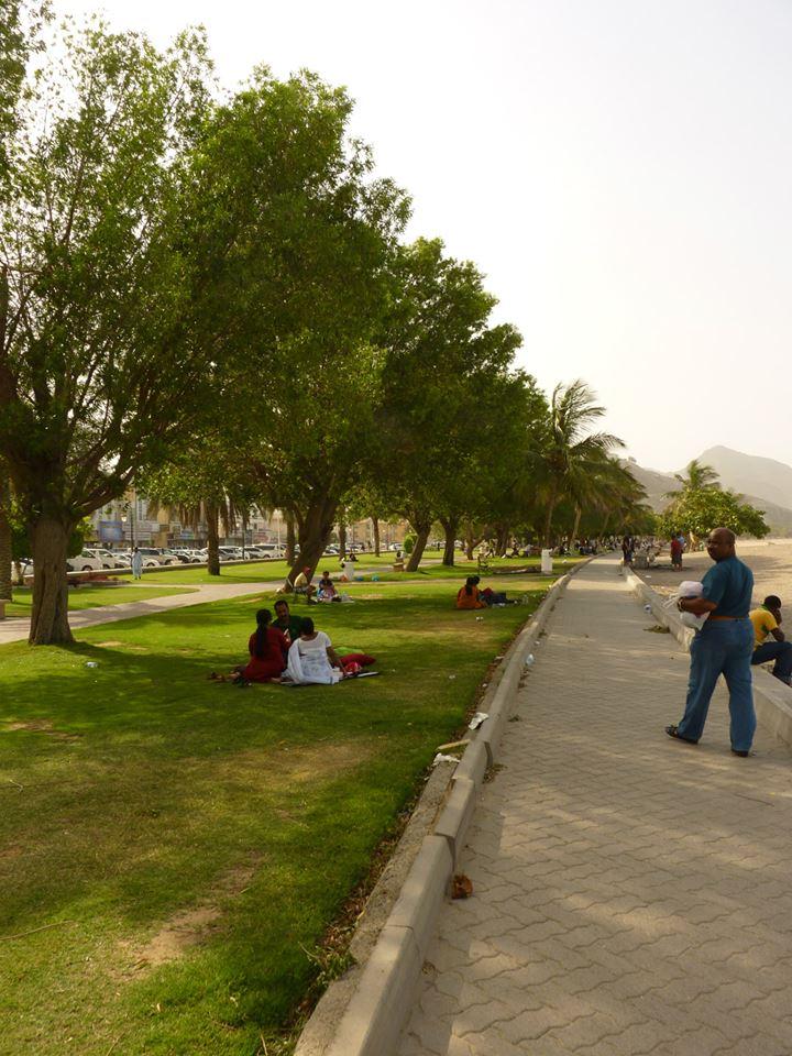 EmiratyArabskie028.jpg