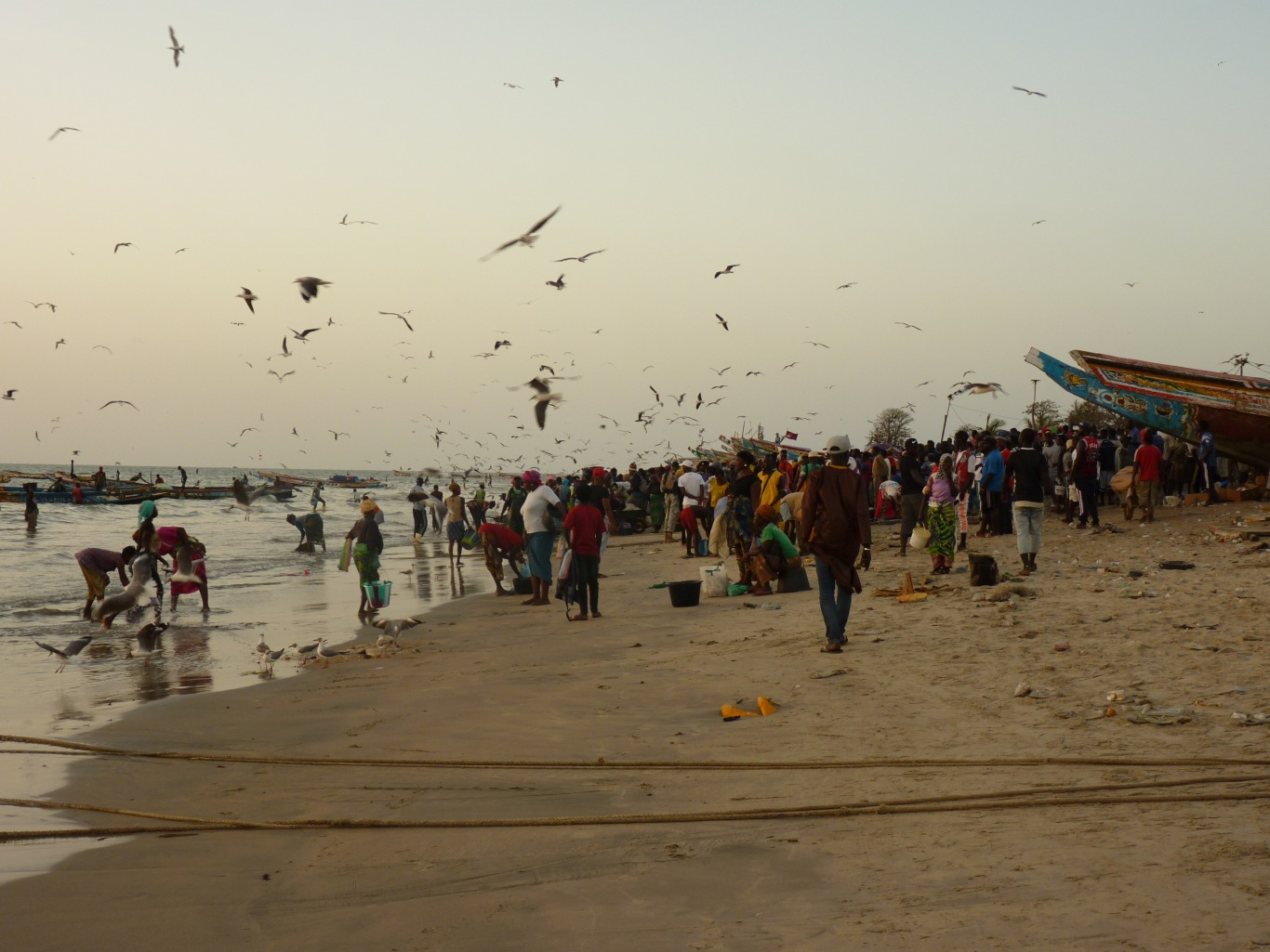 Gambia227