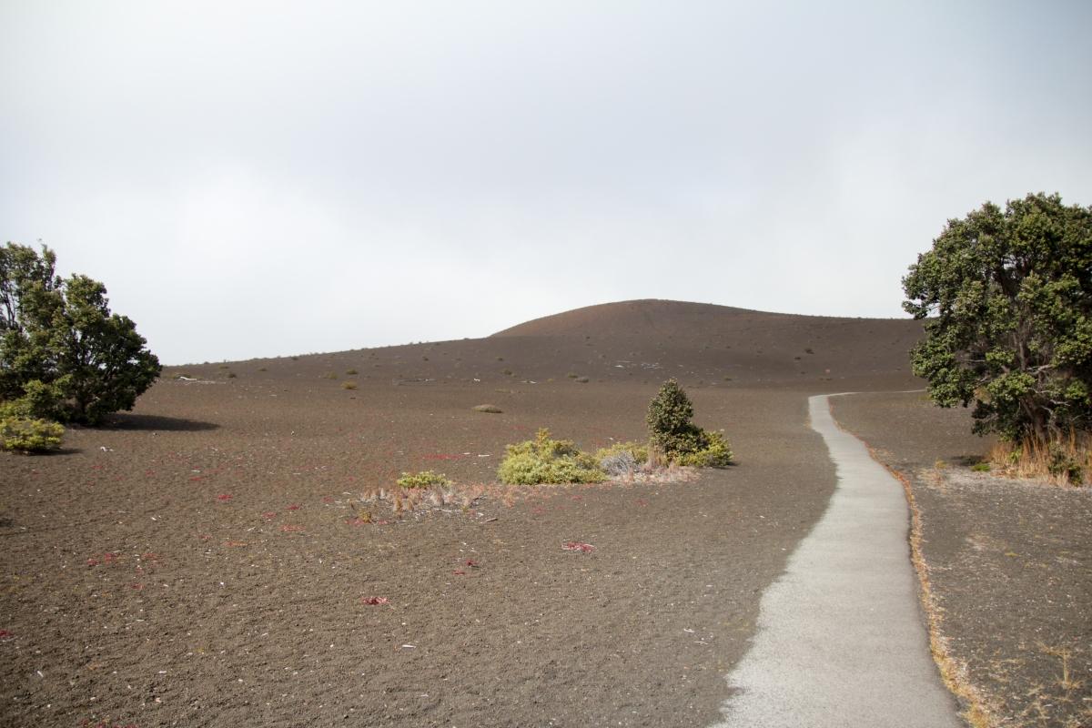 Hawaje126