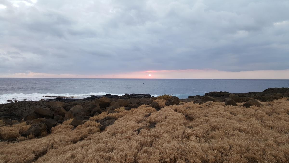 Hawaje159a