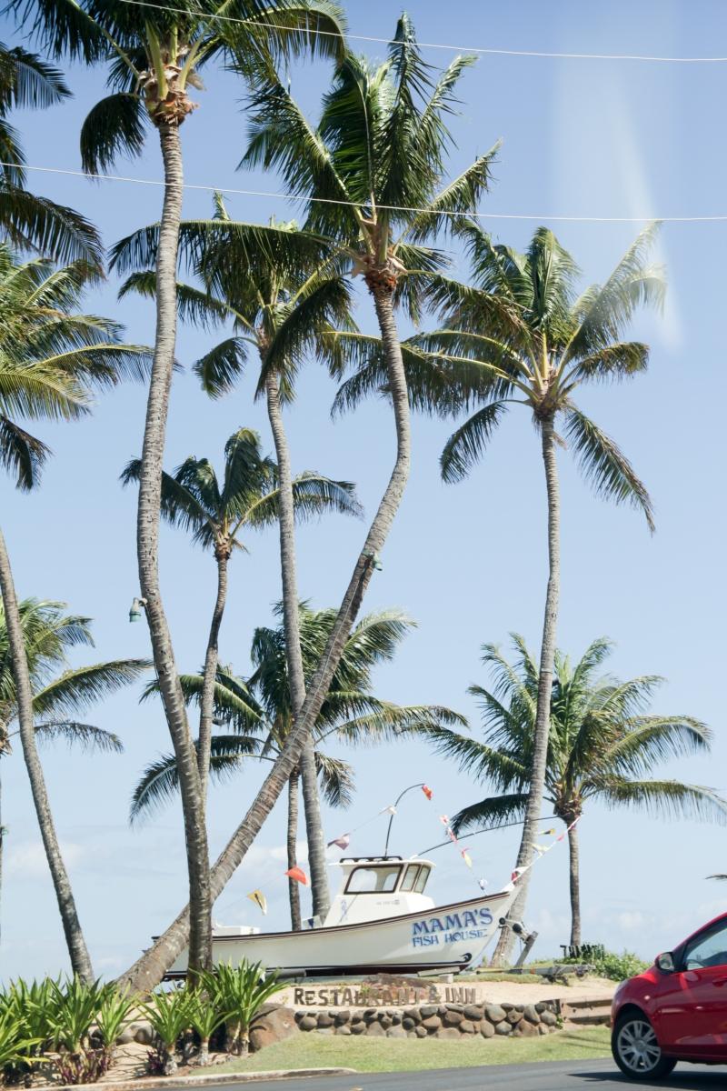 Hawaje194