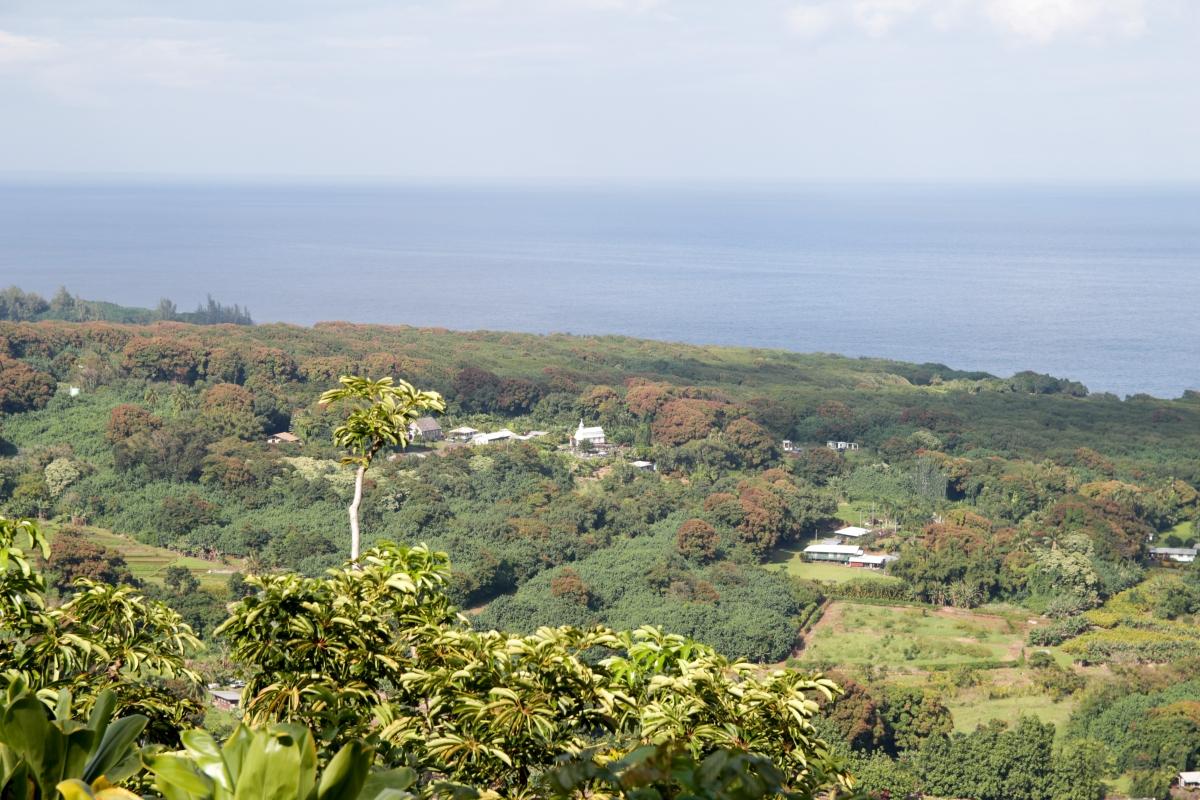 Hawaje232