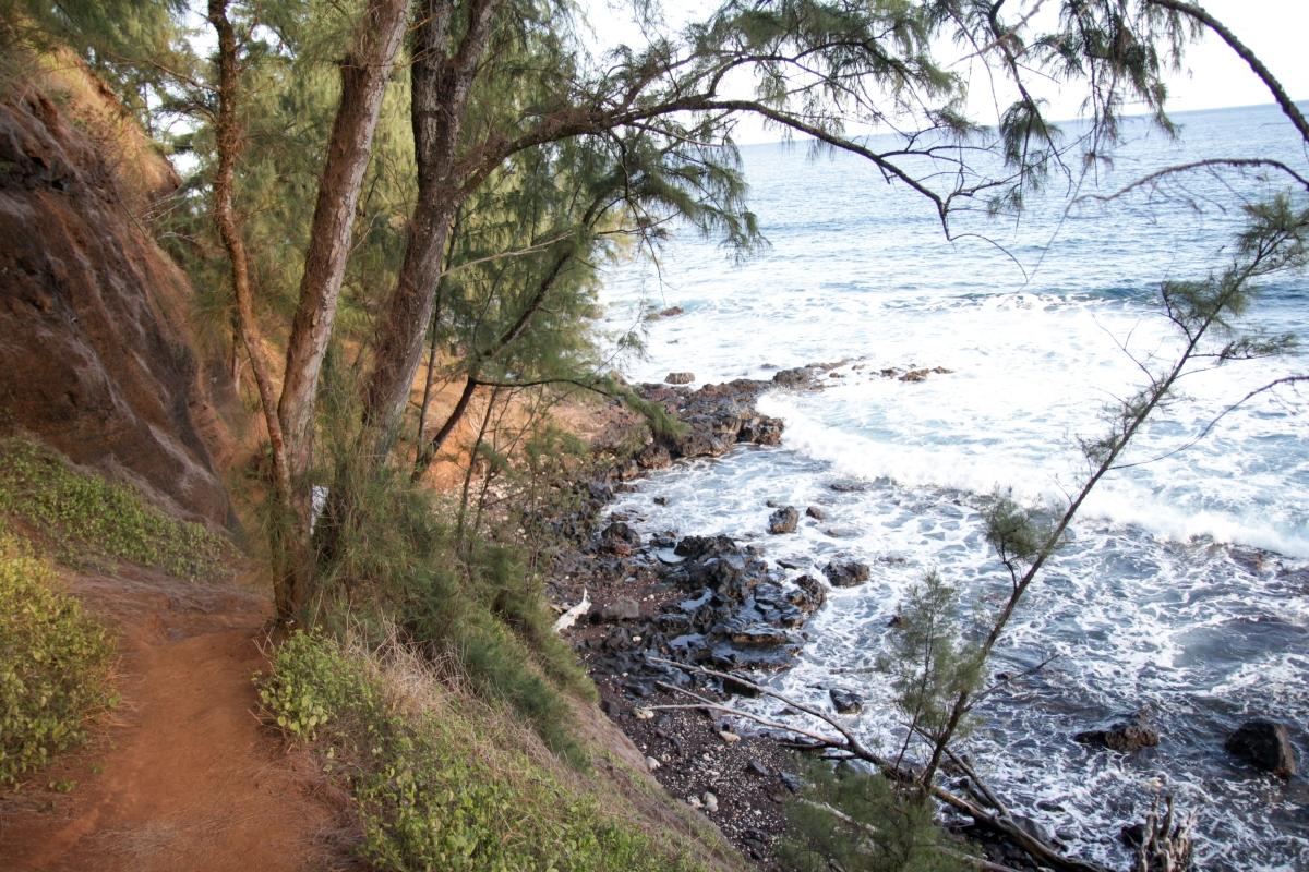 Hawaje238