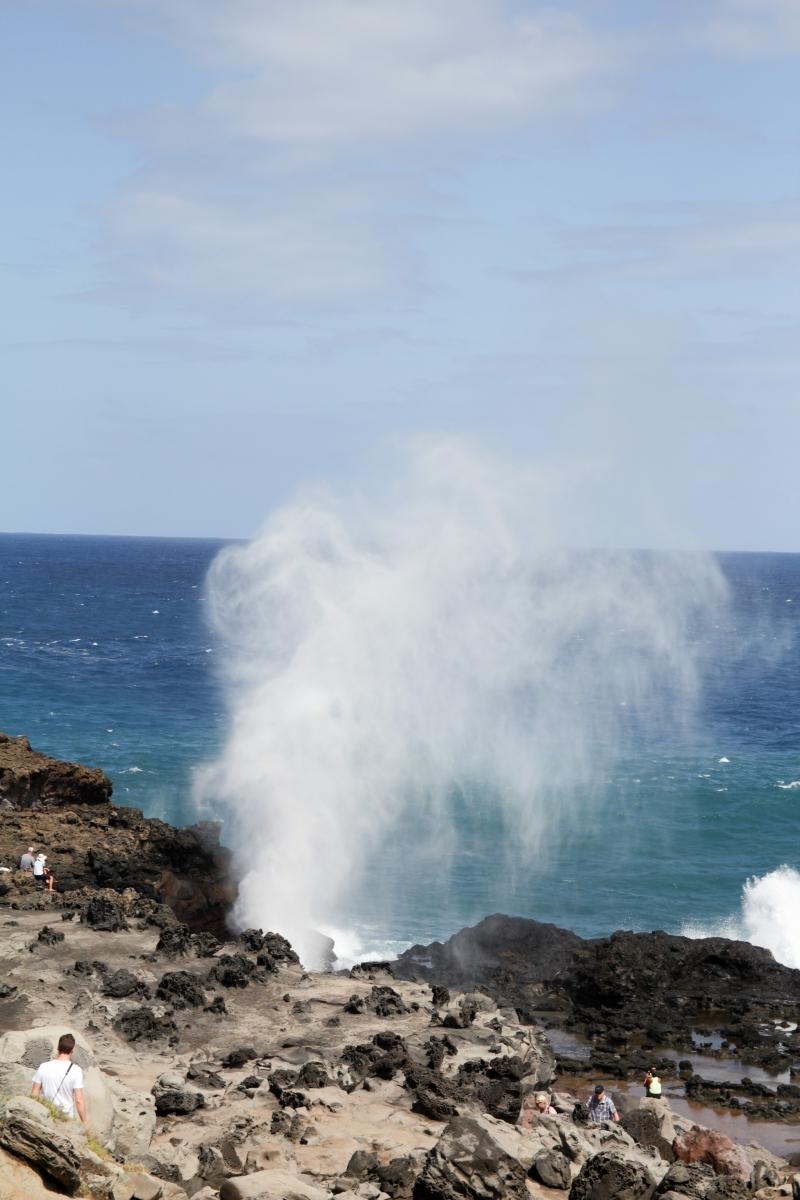 Hawaje278