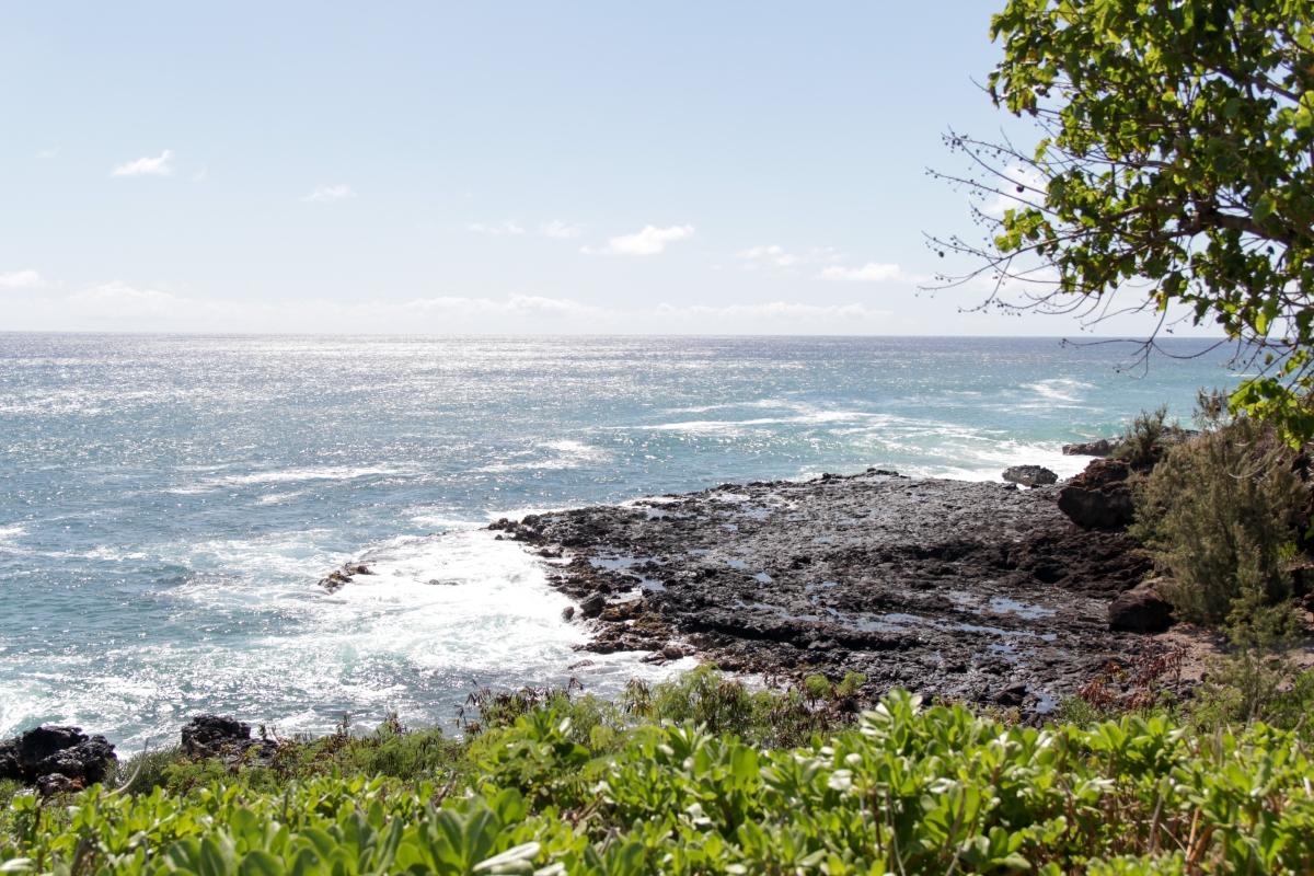 Hawaje369