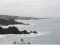 Hawaje290