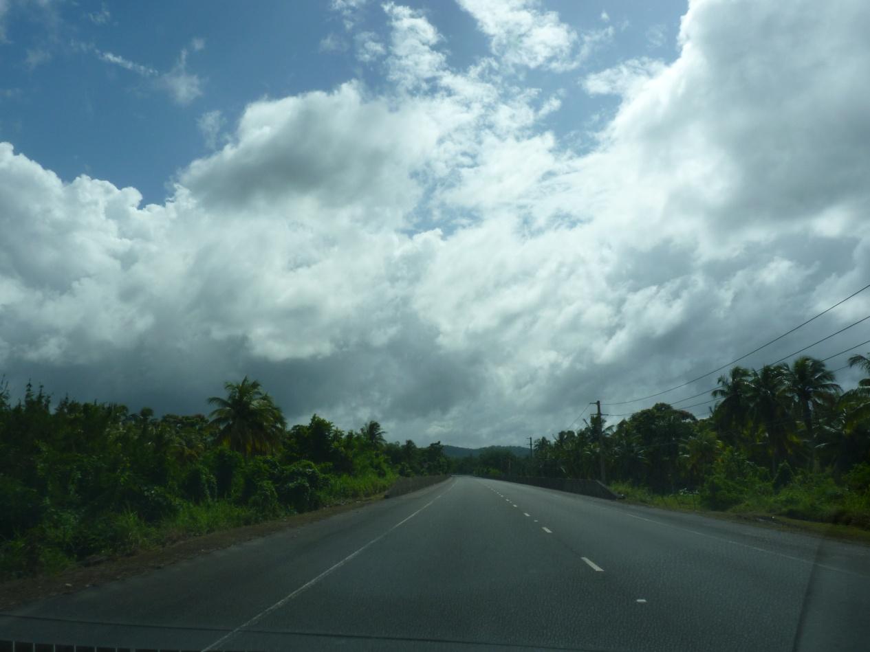 Jamajka249