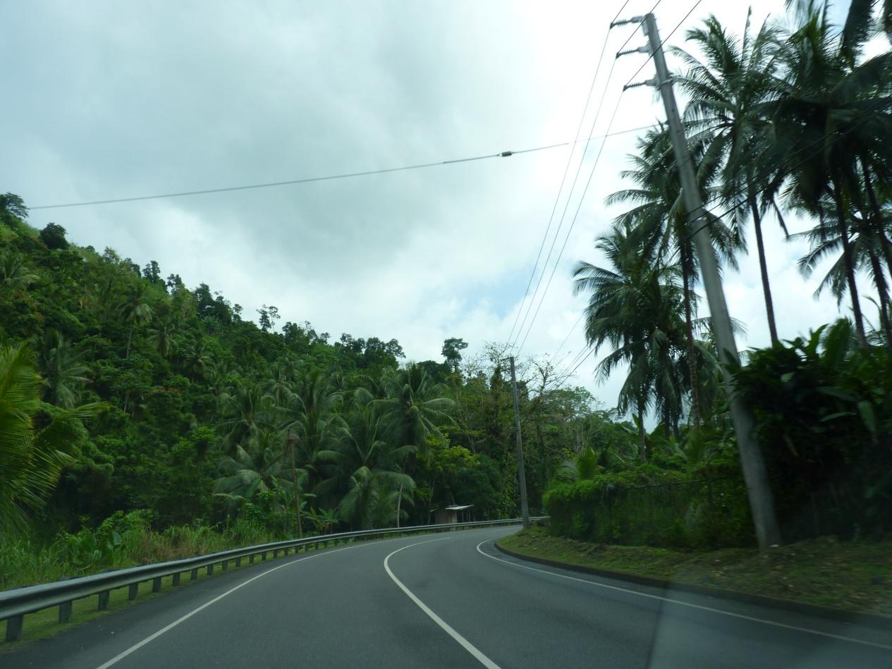 Jamajka253