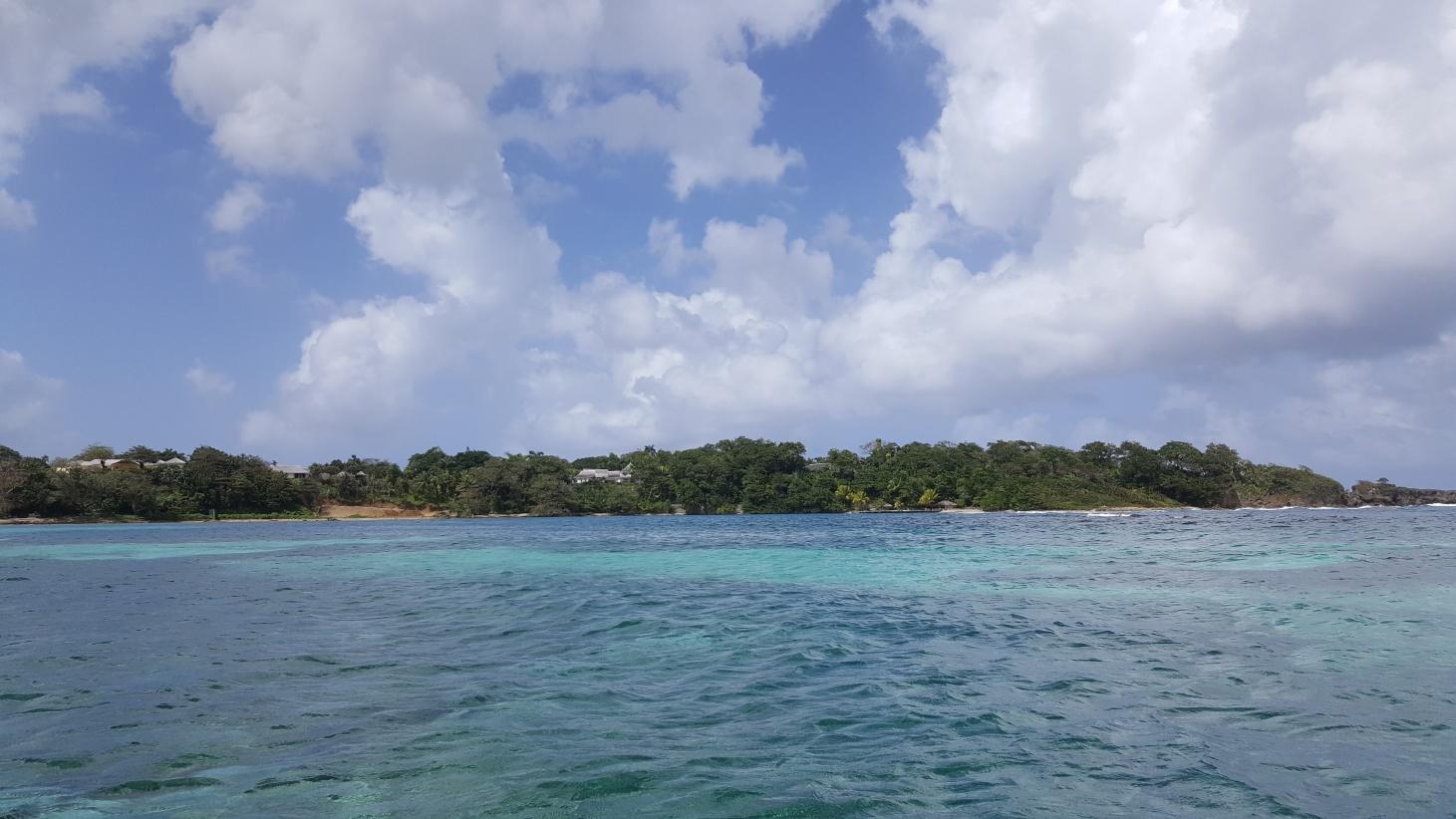 Jamajka313