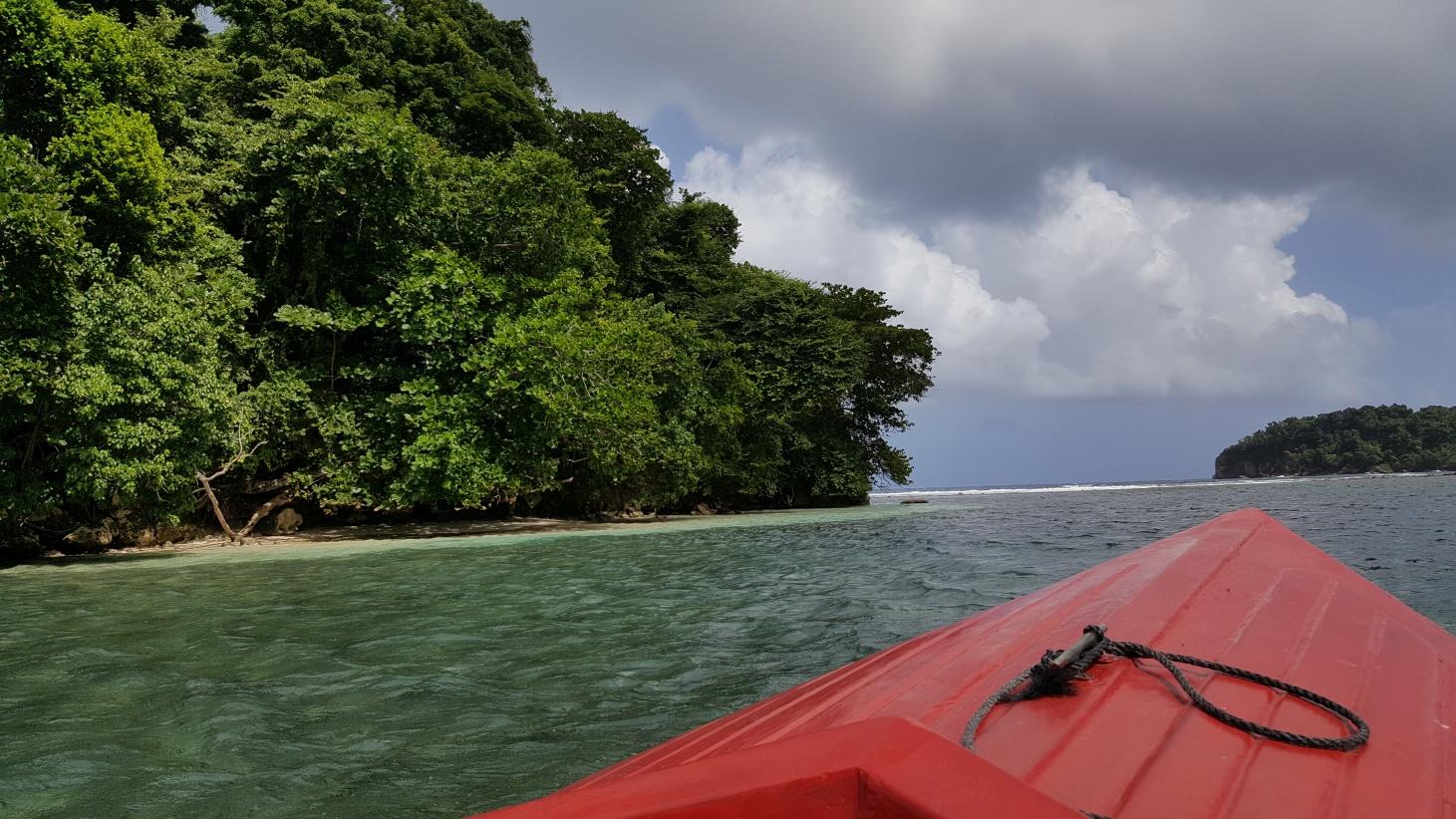 Jamajka317
