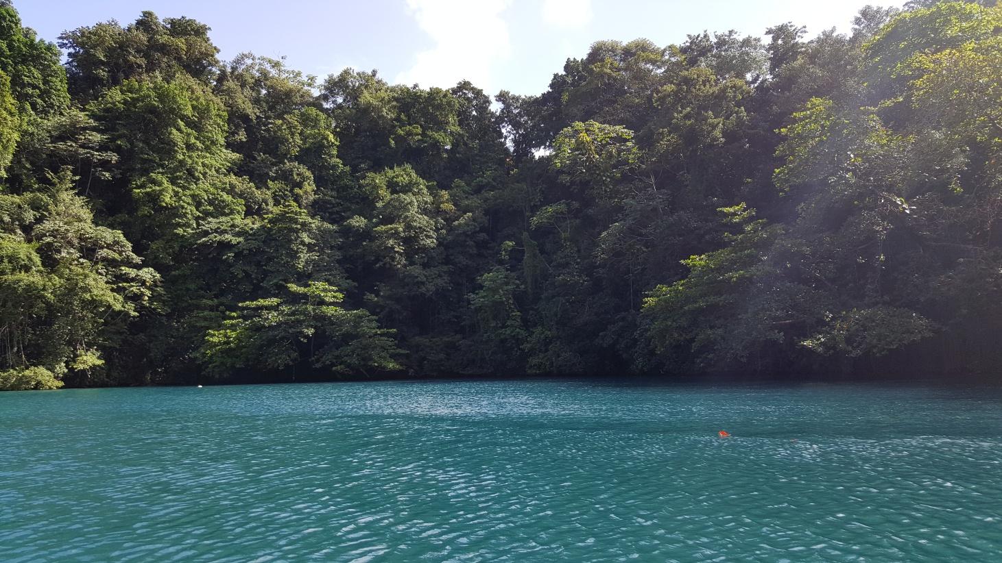 Jamajka344