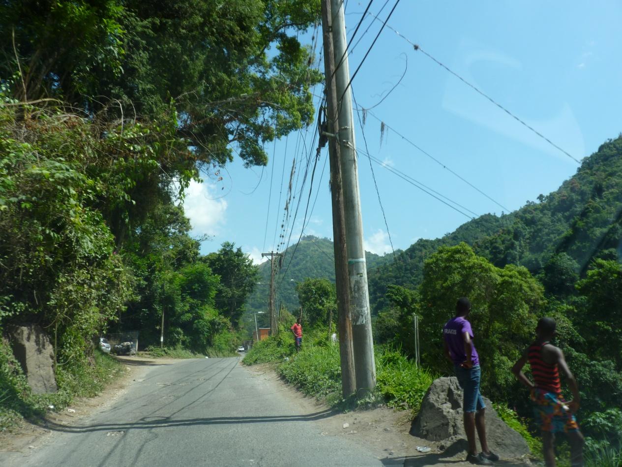Jamajka395