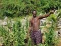 Jamajka073