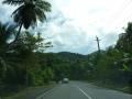 Jamajka254