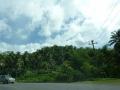 Jamajka255