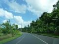 Jamajka256