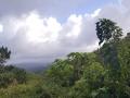 Jamajka280