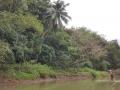 Jamajka364