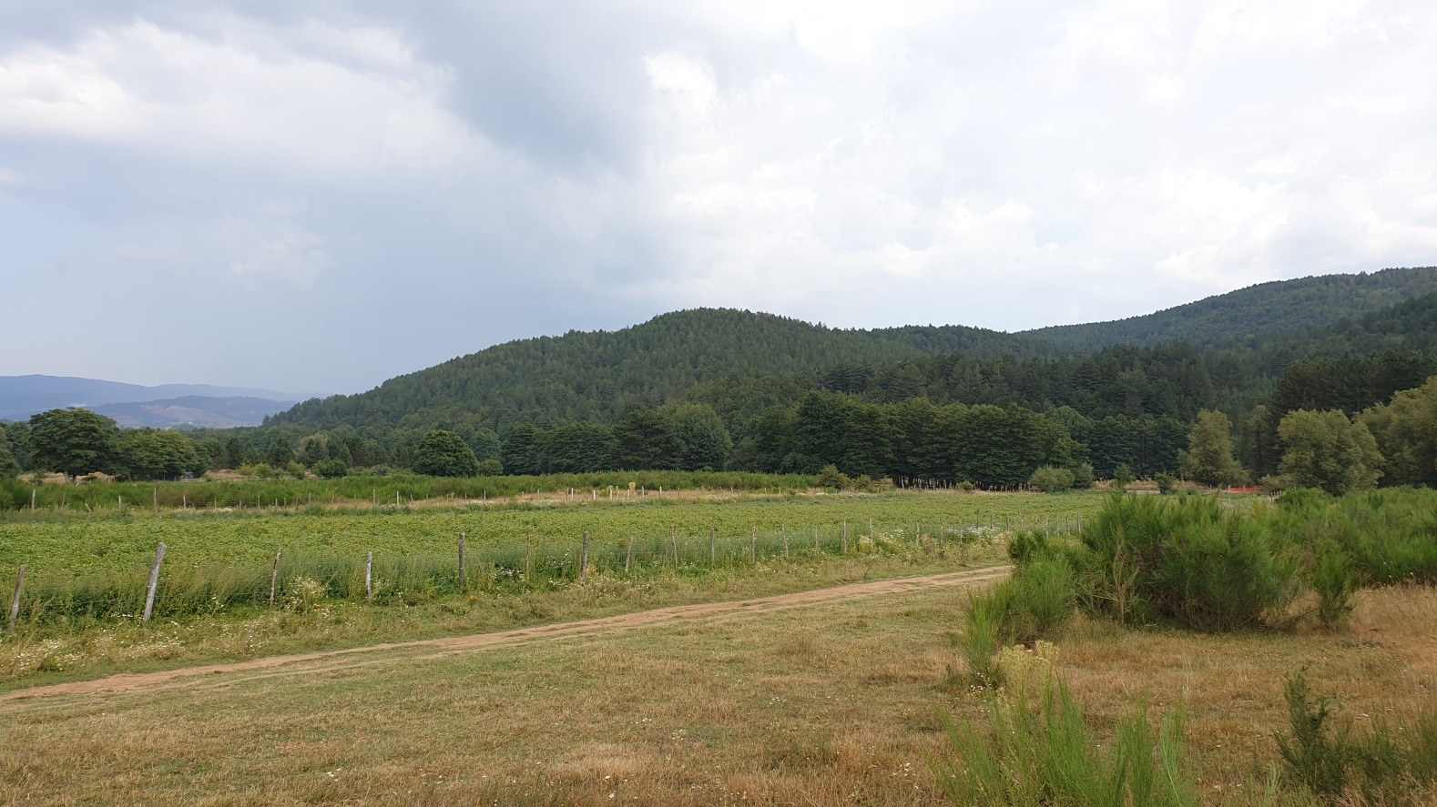Kalabria177