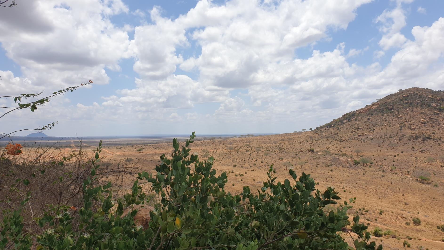 Kenia121