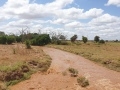 Kenia098