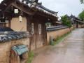 Korea0513