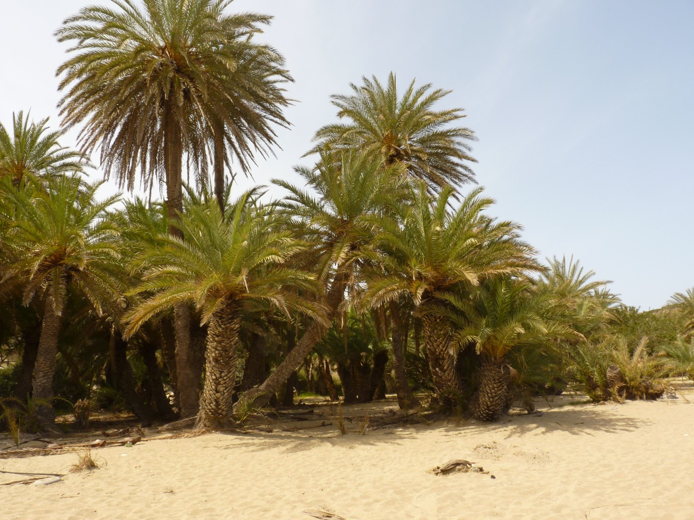 Kreta2012.007