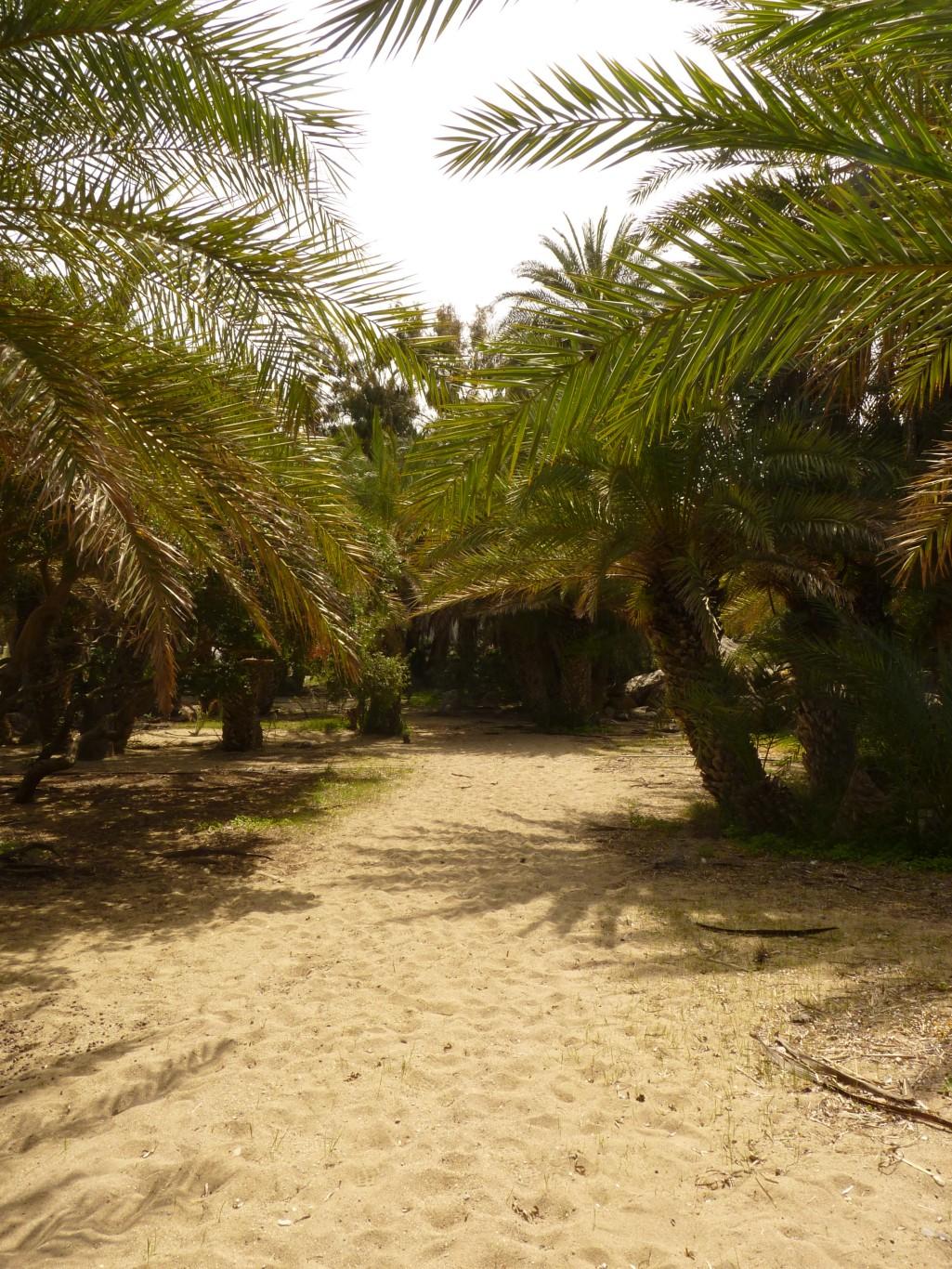 Kreta2012.019