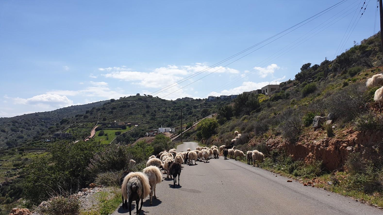 Kreta2019.035