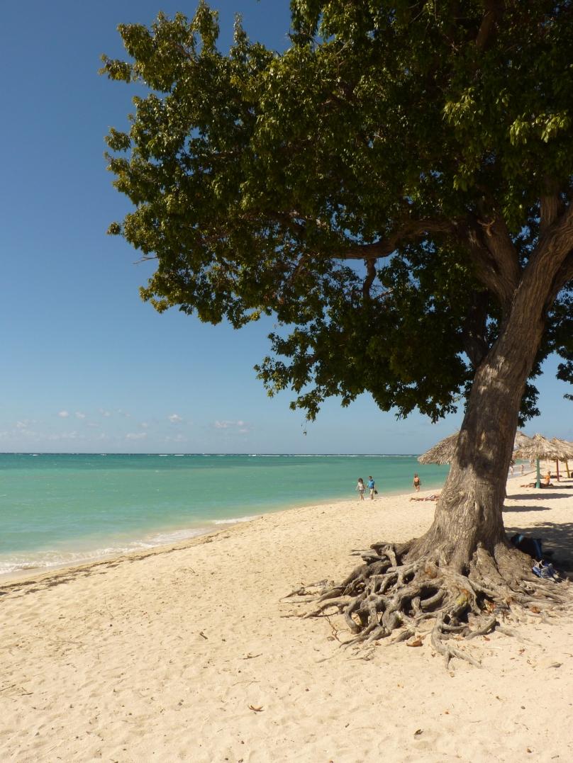 Kuba104.jpg