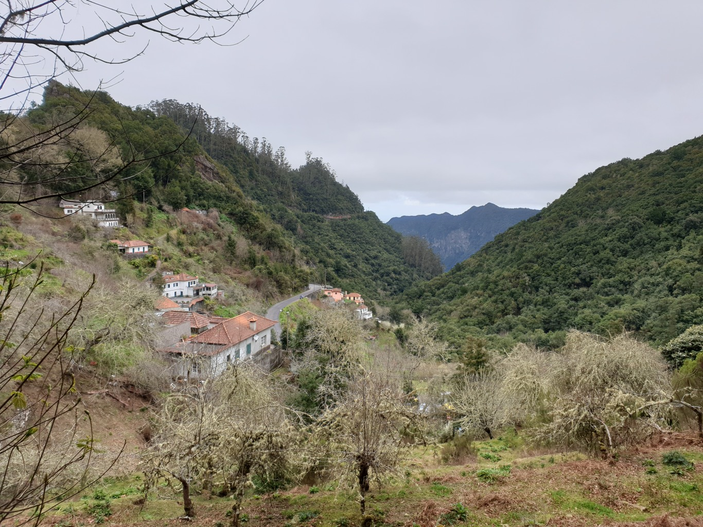 Madera127