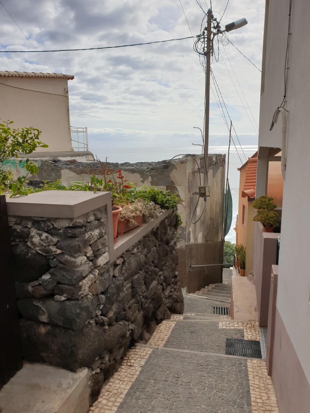 Madera182