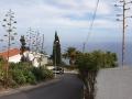 Madera019