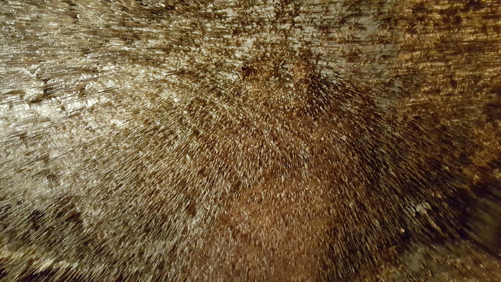 Majorka-Cuevas-del-Drach015