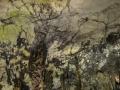 Majorka-Cuevas-de-Arta012