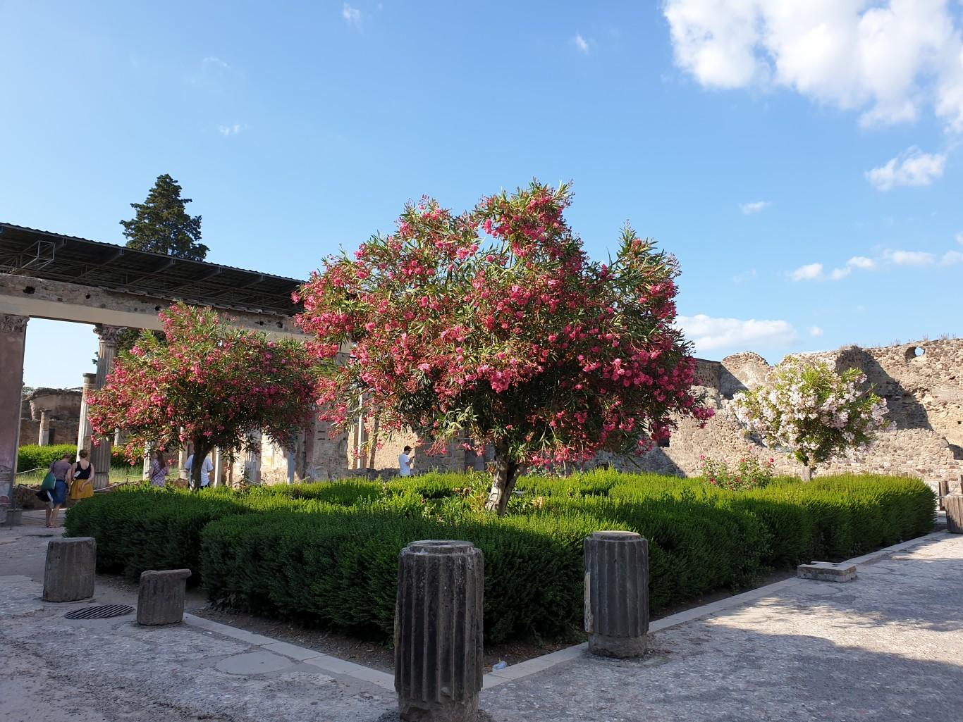 Neapol-i-Amalfi083
