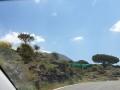 Neapol-i-Amalfi037