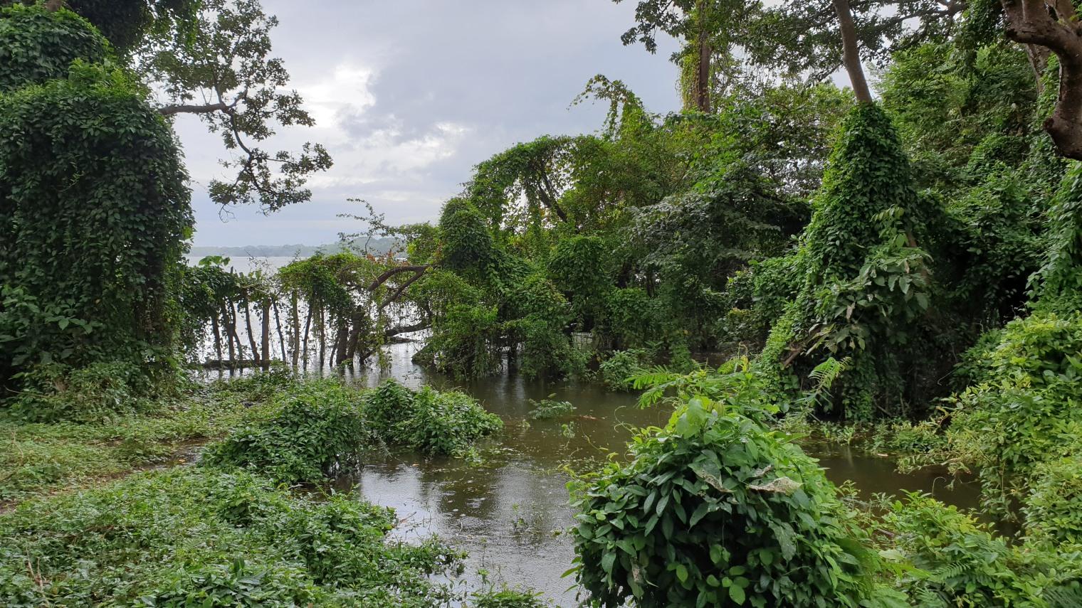 NikaraguaKostaryka329