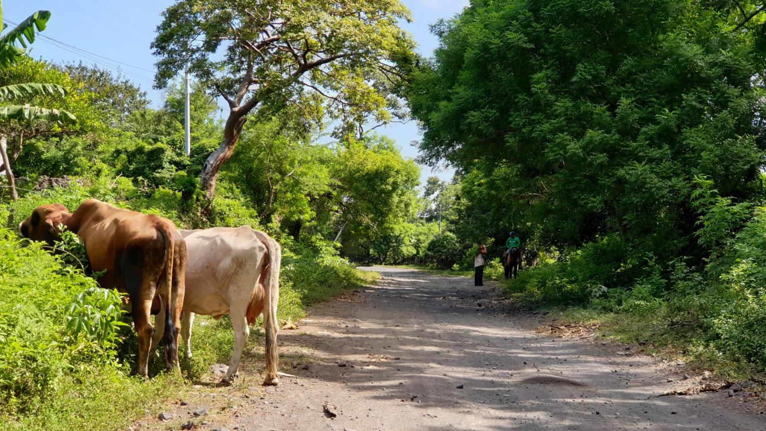 NikaraguaKostaryka355