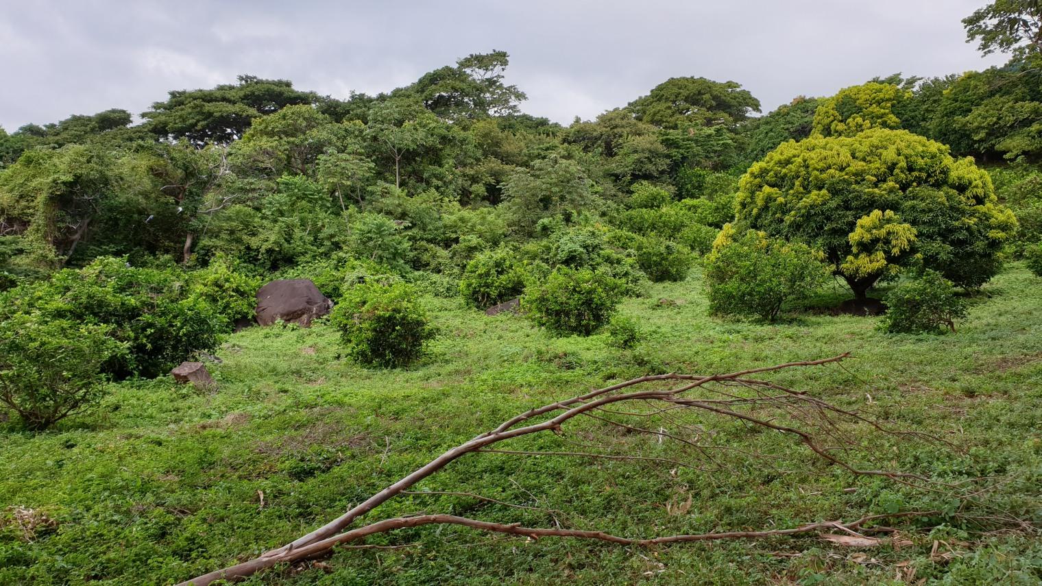 NikaraguaKostaryka399