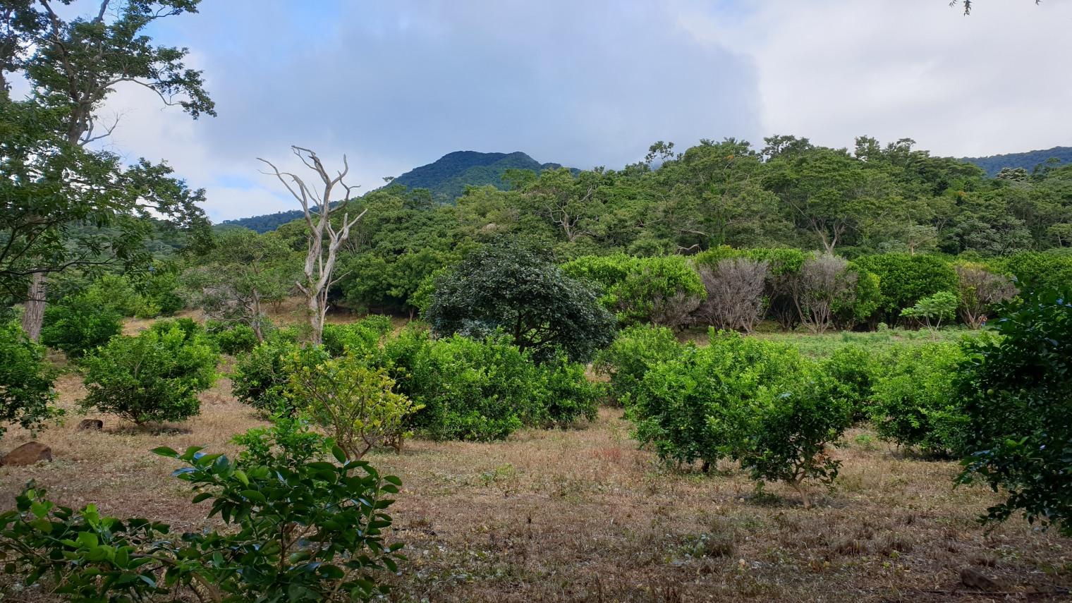 NikaraguaKostaryka403