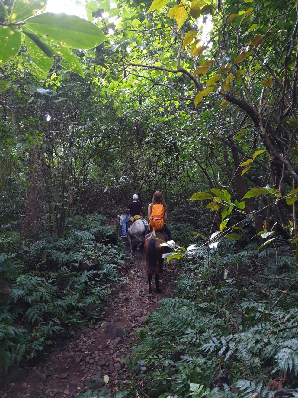 NikaraguaKostaryka412