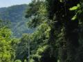 NikaraguaKostaryka233
