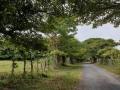 NikaraguaKostaryka297