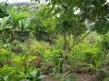 NikaraguaKostaryka300